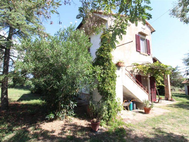 Casale ex ente maremma con giardino in vendita 776A