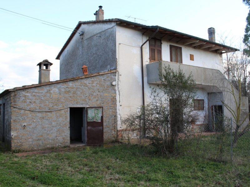 Casale ex ente maremma con terreno e uliveto in vendita