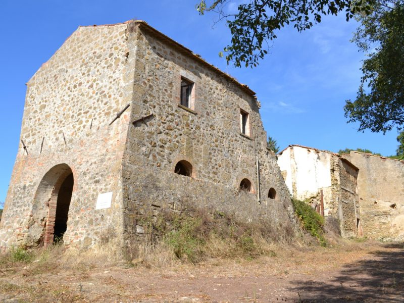 Azienda con Casolare in vendita in maremma del 1800